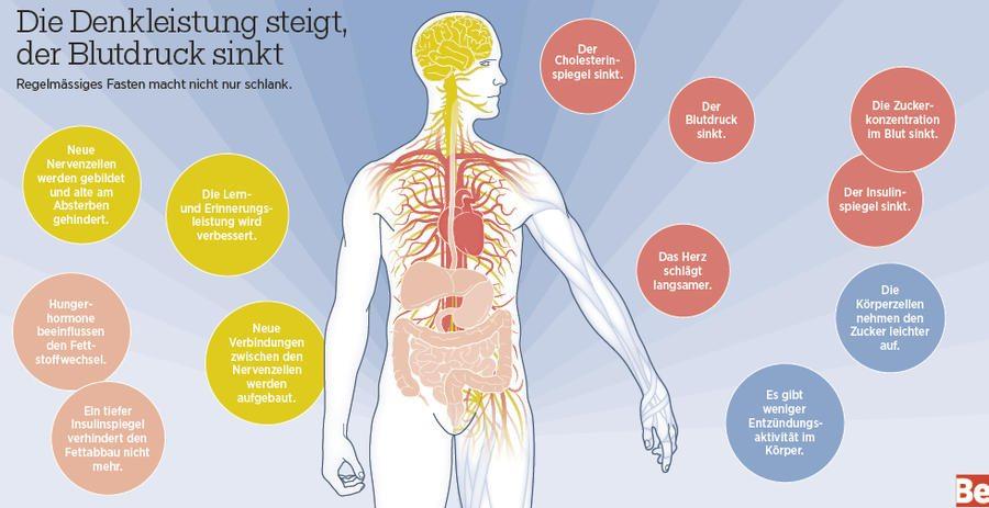 Studie Fasten Für 72 Stunden Kann Das Gesamte Immunsystem Der